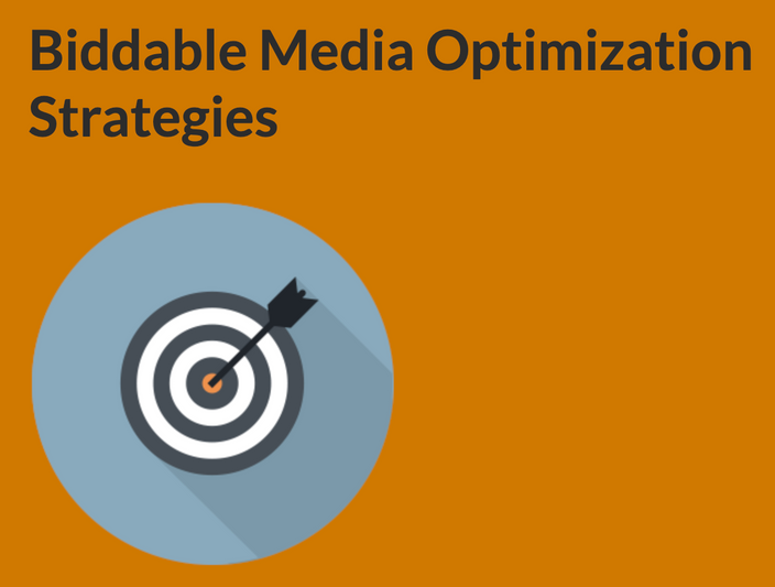 Biddable Media Optimization Strategies