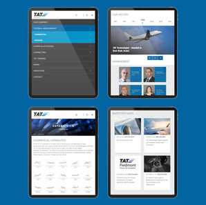 TAT Technologies group