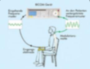 Bicom   Bioresonanz  Funktion   Frequenz