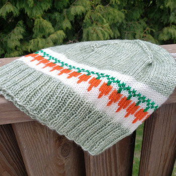 Carrots for All! Hat