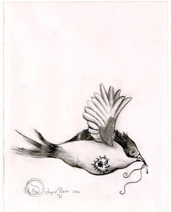 Homing Bird Carrying Home Within