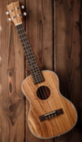 beatiful tenor ukulele made of zebrawood
