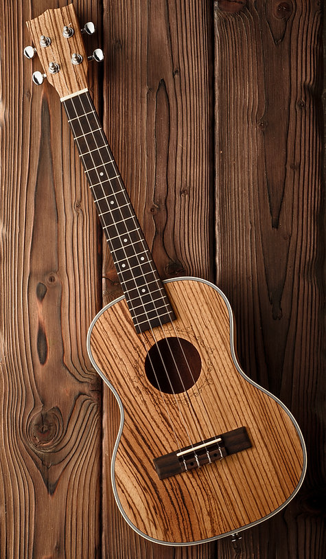beatiful tenor ukulele made of zebrawood