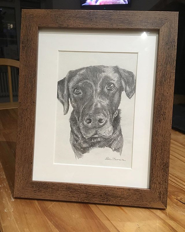 Another Pet portrait ready for Christmas