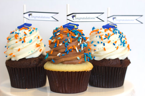 Custom Graduation Cupcakes