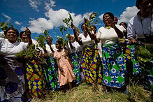Heifer Int. Women's Group in Zambia.jpg