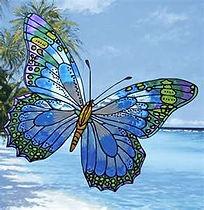 blue butterfly 1.jpg