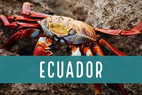 Blog Ecuador.JPG