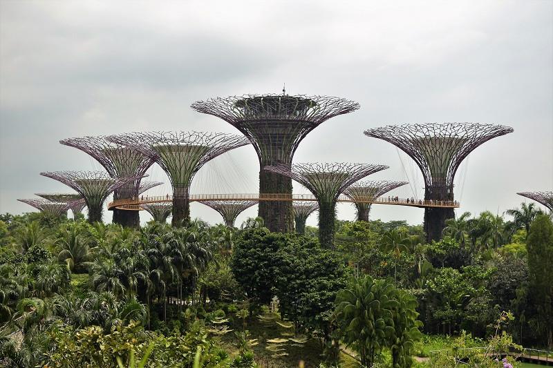 Grossstadtdschungel Singapur