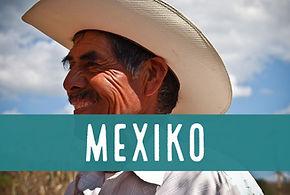 Blog Mexiko.JPG