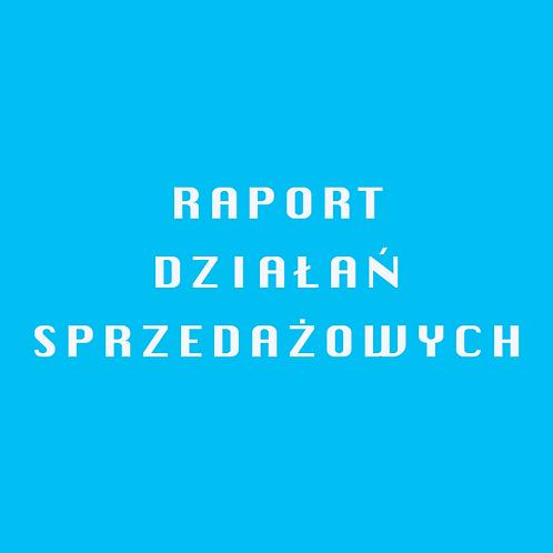 Arkusz raportowanie działań sprzedażowych handlowców