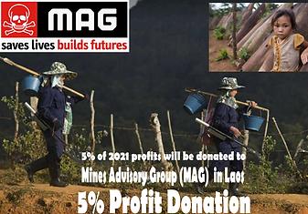 Brickssoldier Donation 2021 MAG.png
