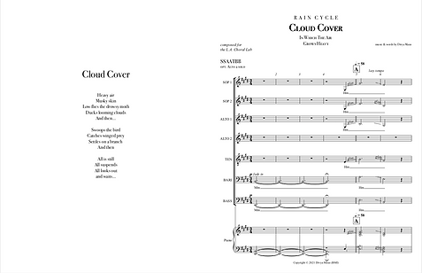 _z Cloud Cover sample pages.png