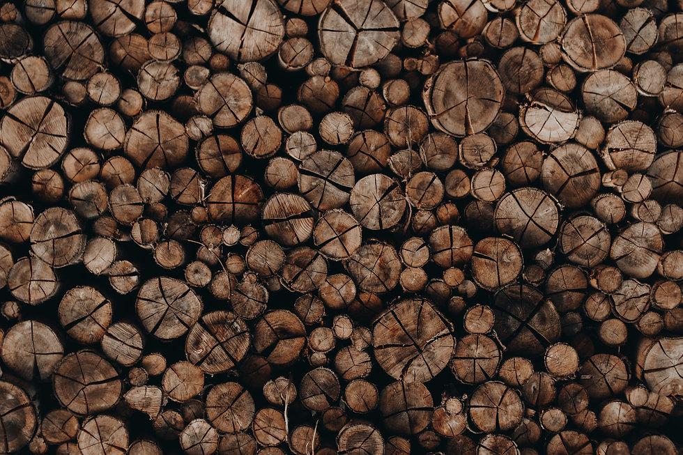pexels-jo%C3%A3o-v%C3%ADtor-heinrichs-17