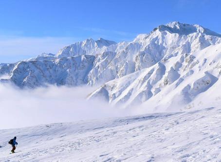 El asceta del Himalaya