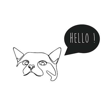 """Pochette """"CHAT HELLO"""""""