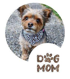 Frau und Haustier Hund Sauber & Minimali