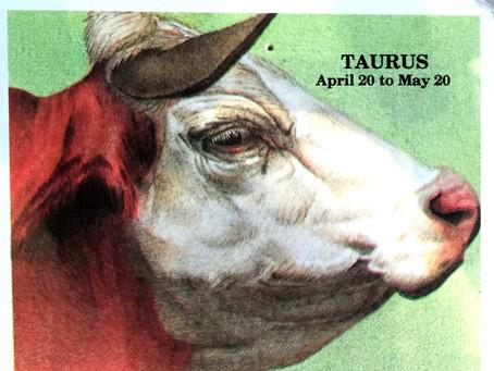 Taurus | April 20 to May 20