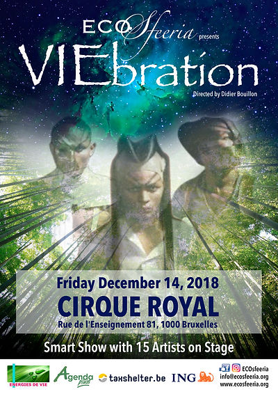 VIEbration Affiche Cirque Royal.jpg
