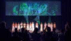 VIEbration photo standing ovation V2.jpg