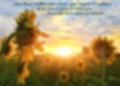 fleur de coeur 4.jpg