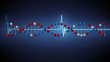 double-fréquence-d-hélice-adn-et-cardiaq