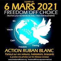 Affiche freedom 6 Mars guillemet.jpg