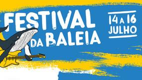 Venha participar do Festival da Baleia em Vitória-ES!
