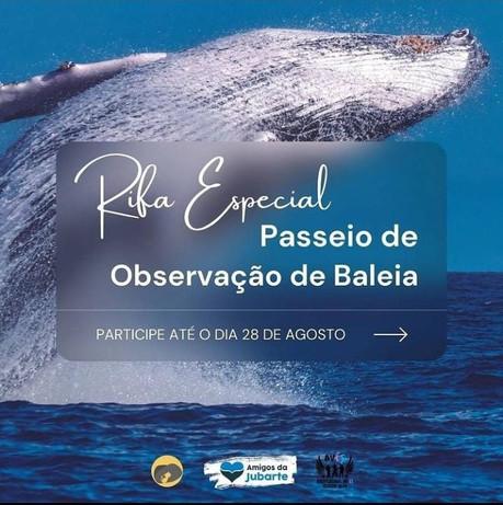 Rifa Especial Baleia Jubarte