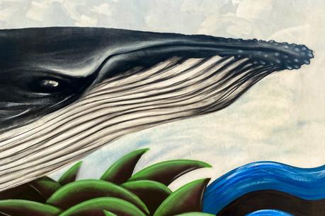 Baleia-Jubarte: Uma Obra de Arte