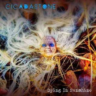 Cicadastone Dying In Sunshine single.jpg