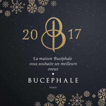 Communicatio Bucéphale Paris