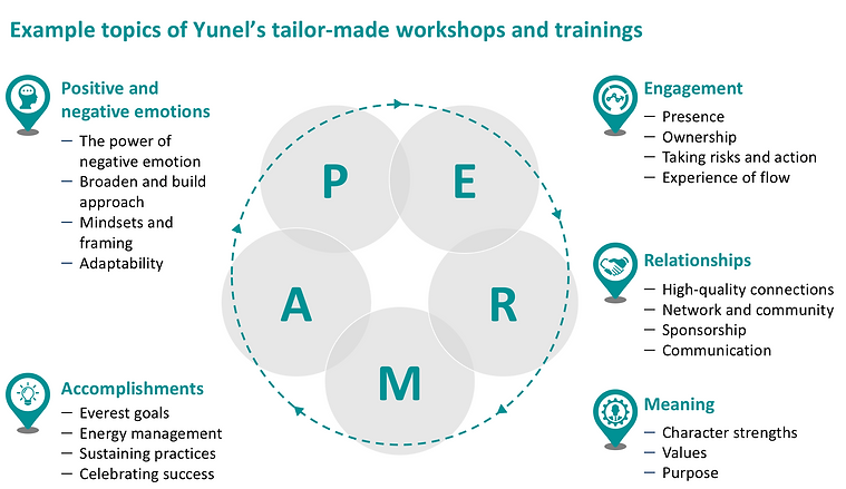Example topics of Yunel's tailor-made workshops and trainings