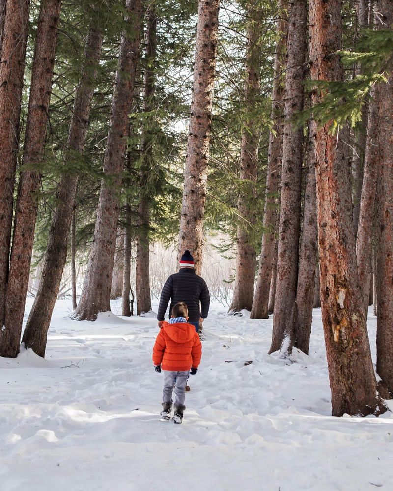 Go on a Winter hike