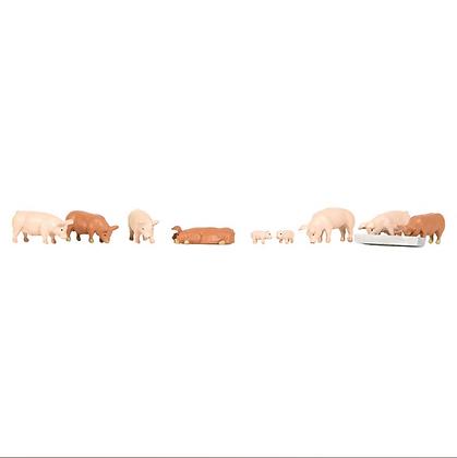 Bachmann OO Pigs - 36-082