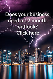 Does you business need a 12 month outloo