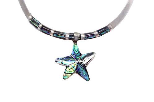 Abalone Starfish Set