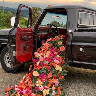 BTS RaRaRiot flowers cascade