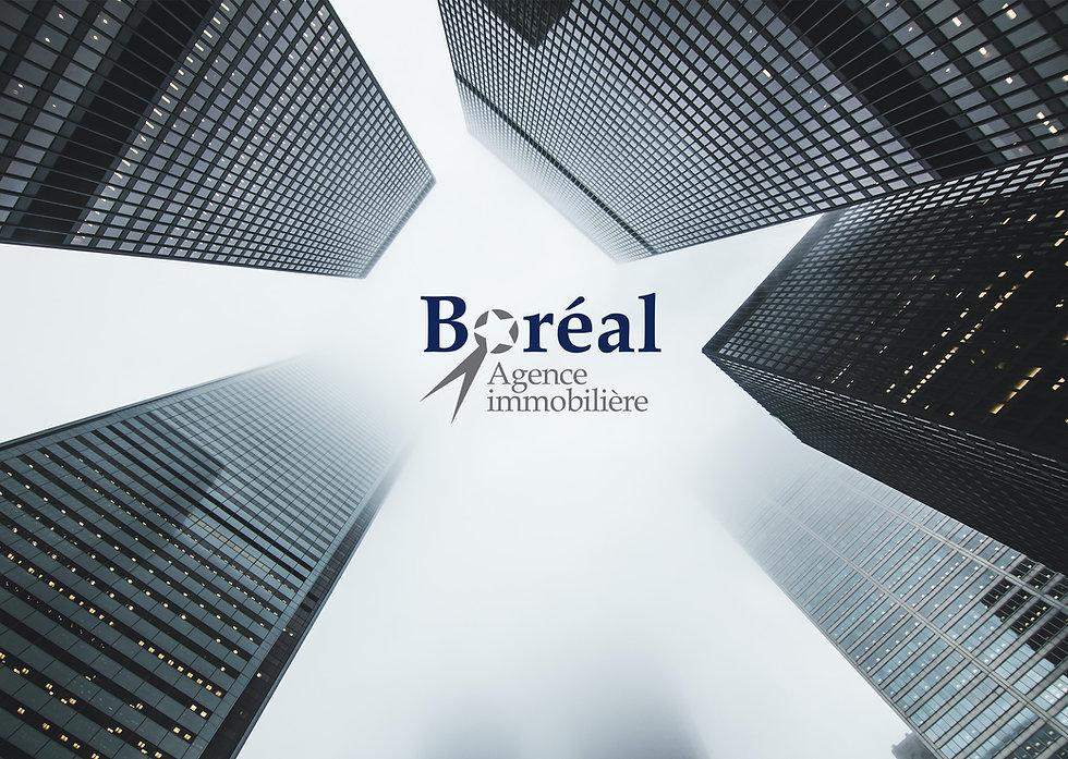 Boreal - Image accueil.jpg