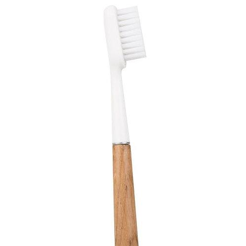 Brosse à dents adulte en chêne rechargeable - Caliquo