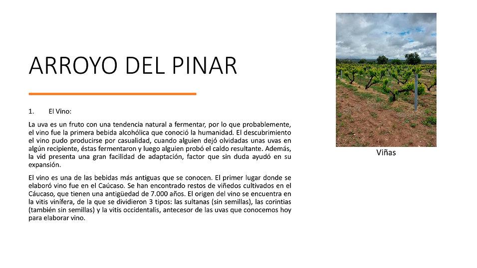 Ruta Arroyo del Pinar 002.jpg