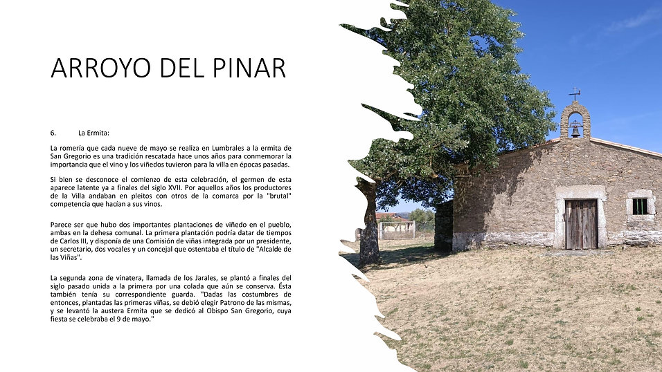 Arroyo del Pinar 007.jpg