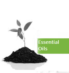 ess_oils base copy.jpg