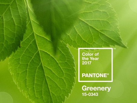 Цвет 2017 года по версии Pantone: Greenery