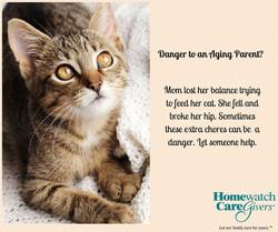 Danger to Aging Parent