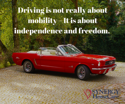 Driving About freedom