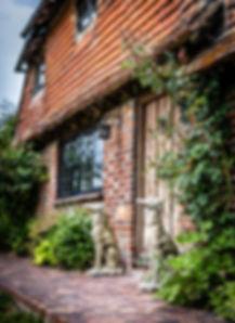 Greyhound Home Boarding Surrey Sussex