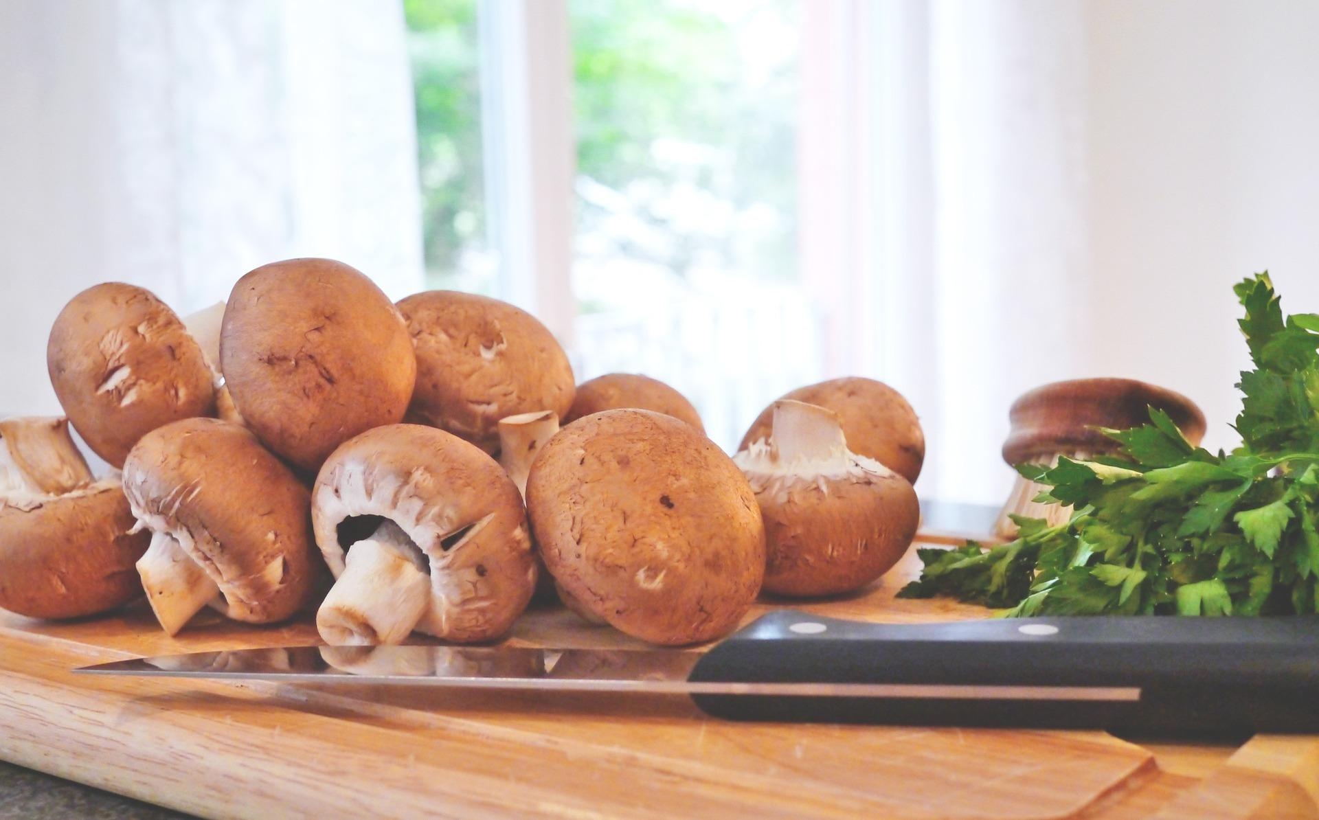 mushroom-817845_1920_edited