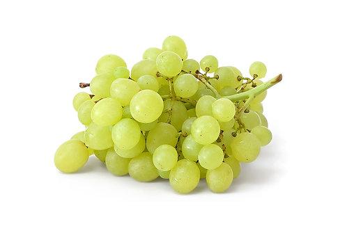Fresho Grapes - Thompson Seedless