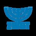Logo_ZWST_06_2020%2520Kopie_edited_edited.png